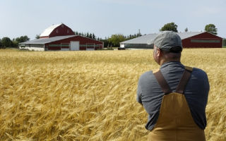 Подробнее о том, что такое агроинженерия