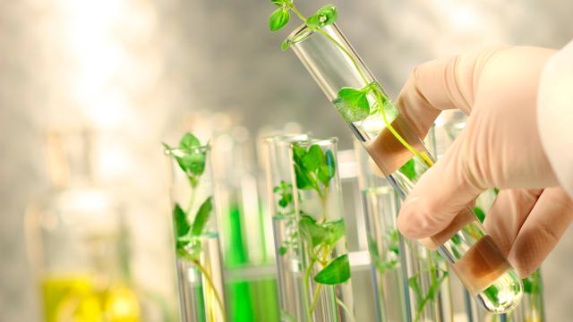 Профессии, связанные с биологией и химией: список