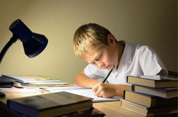 Научно-исследовательская работа: что это такое и как написать