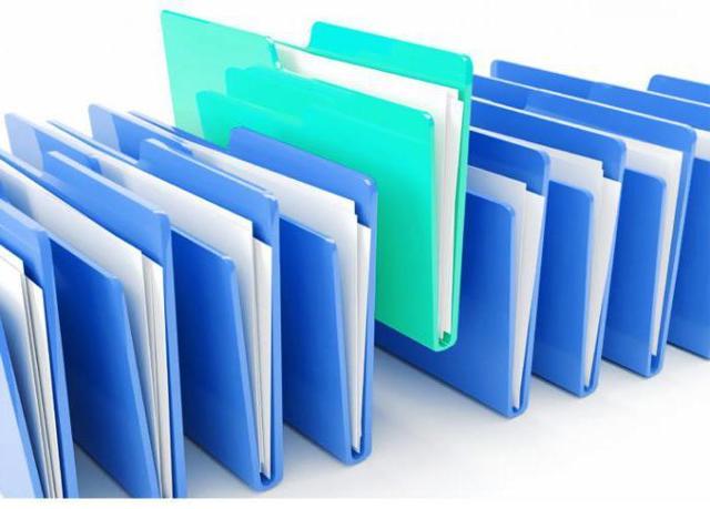 Организационные документы - что это такое: понятие, назначение и виды